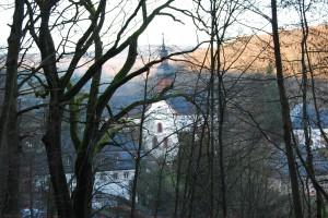 Rheingau bei Kloster Eberbach © M. Joppich 2011