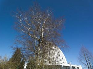 Bahai-Tempel bei Hofheim-Langenhain © M. Joppich 2012