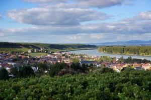 Nierstein und der Rhein © M. Joppich, 2012