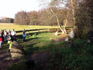 Menhiranlage Roßdorf bei Darmstadt